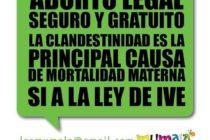 Debate sobre aborto en el Colegio Carlos Pellegrini