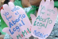 """[Salta] """"Hay que derogar el protocolo de aplicación en Abortos No Punibles"""""""