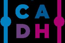 Recomendaciones de la CADH para la vigilia en el Congreso. Asesoria jurídica