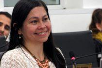 [Chaco] Nancy Sotelo busca regular el uso de la pirotecnia