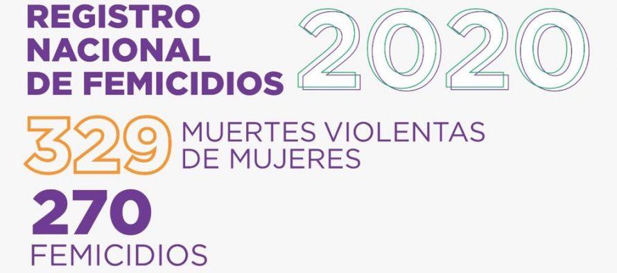 Registro nacional de femicidios.