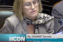 [Mendoza] La diputada Cousinet y el acceso a la información pública