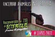 [La Plata] Maia Luna: 29 de abril: Por las libertades de los animales.