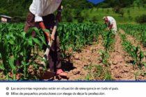 [Corrientes] Organizaciones se manifestarán en defensa de los pequeños productores
