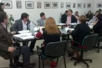 [Plaza Huincul] Deliberante adhiere a proyecto que pide declarar emergencia por violencia de género