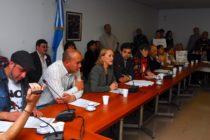 [Bs. As.] Se realizó audiencia pública contra matadero municipal