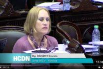 [Mendoza] Intervención diputada Cousinet sobre ley acceso información