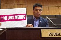 [Neuquén] Dictamen favorable para el pedido de emergencia nacional por violencia de género