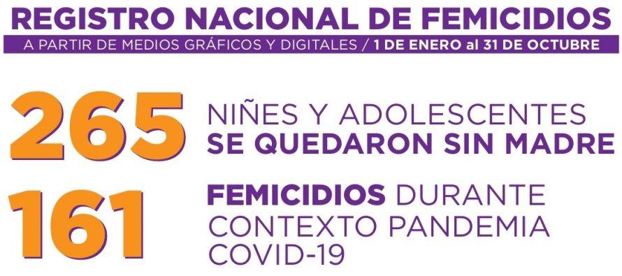 Registro Nacional de Femicidios entre el 01 de Enero y el 31 de Octubre.