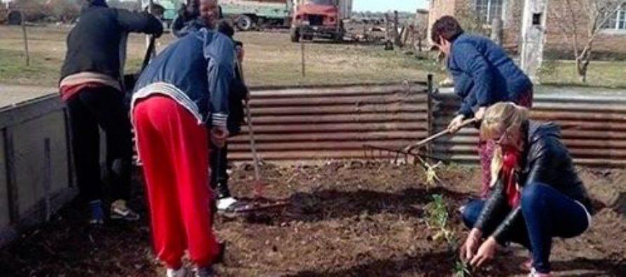 [San Nicolás] Barrios de Pie pone en marcha las huertas comunitarias