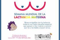 """[Tucumán] Se presenta la propuesta de """"bares amigables con la lactancia materna"""""""