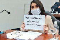 [Santiago del Estero] La concejala Marianella Lezama Hid presenta nuevamente ordenanza por cupo laboral trans