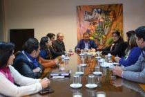 [Tucumán] Las Mumala se reunieron con la Comisión de Salud de la Legislatura