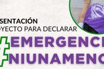 Exigen declarar la Emergencia Nacional en Violencias de Género
