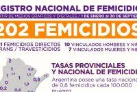 Registro Nacional de Femicidios. Septiembre 2020. Informe completo.