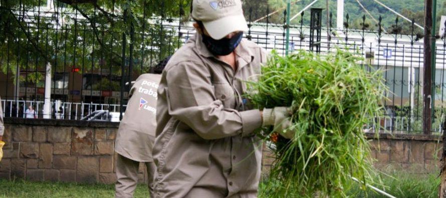 [Salta] Libres del Sur colabora en el acondicionamiento de escuelas.