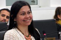 [Chaco] Por iniciativa de la concejala Sotelo aprueban promoción y fomento al teatro