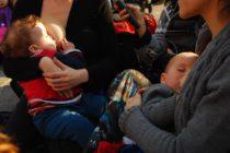 "[Corrientes] Invitan a los bares a ser ""amigables"" con la lactancia materna"