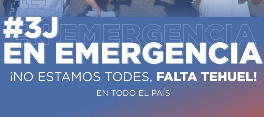[La Plata] Ni Una Menos. También en pandemia. Por Manuela Wilhelm y Maia Luna.
