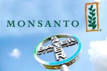Bayer-Monsanto, la fusión empresarial más grande de la historia