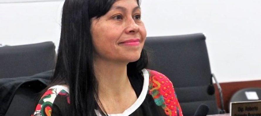 [Chaco] Sotelo propone la eximición de impuestos para teatros independientes