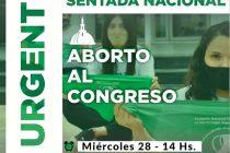 Sentada Nacional por el tratamiento del Aborto en el Congreso.